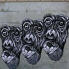 Three Monkey's by Stuart Steele
