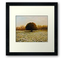 In Anticipation of The Spring Framed Print