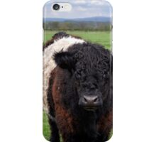 Belted Galloway iPhone Case/Skin