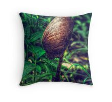 HDR Throw Pillow
