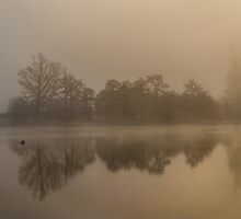 Mist on Loch Ness by Ross Hutton