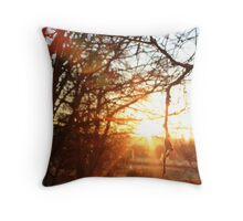 Light of Day.  Throw Pillow