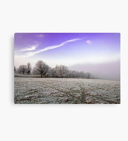 Freezing Fog Canvas Print
