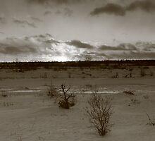Infra Red Sunset by Chris Kiez