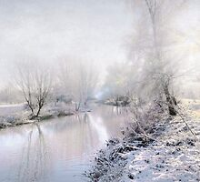 White Winter by Svetlana Sewell
