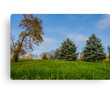 evergreen Canvas Print