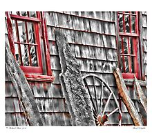Rural Delights Photographic Print