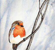 Winter Robin by Val Spayne