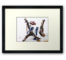 Blue jays in Winter Framed Print