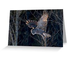 Great Grey Owl Greeting Card
