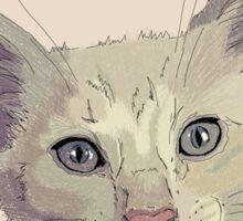 Mochi the Cat Sticker