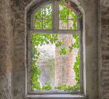 Curtains on the outside by Nicole W.