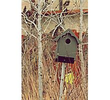Brick Works Birdhouse Photographic Print