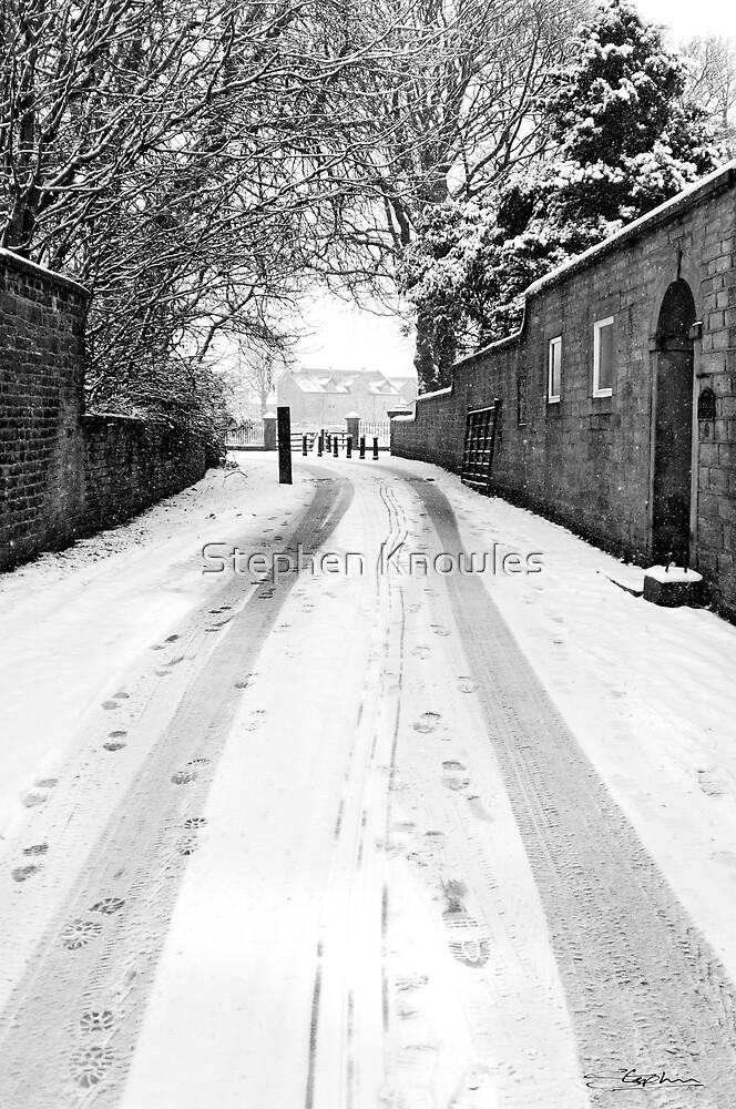 Tracks in the Snow by Stephen Knowles