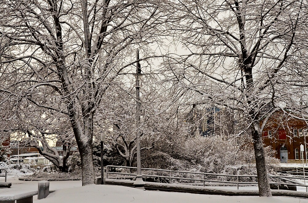 Snowfall4 by d1373l