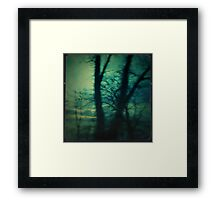 Forest Flight Framed Print