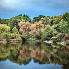 Central Park in October by Thomas Gehrke