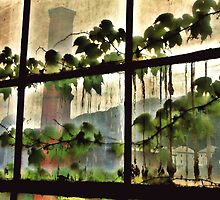 View From A Factory Window by BavosiPhotoArt