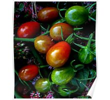 Grape Tomatoes Poster