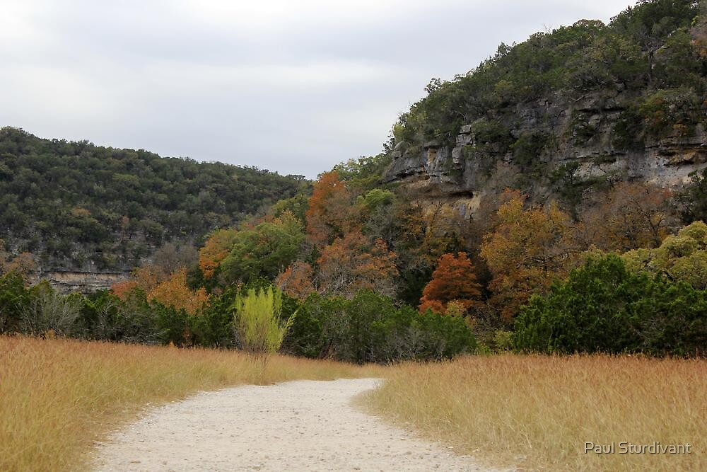 Lost Maples Trail by Paul Sturdivant