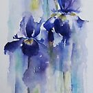 Irises by artbyrachel