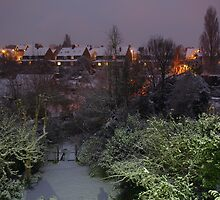 Colours in the Garden on a Snowy Night by seymourpics
