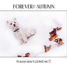 """Pet Pad Collection """" Forever Autumn """" by Love Through The Lens"""