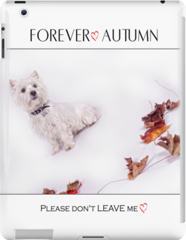 "Pet Pad Collection "" Forever Autumn "" by Love Through The Lens"