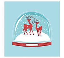 Snow-globe Couple Deer Photographic Print