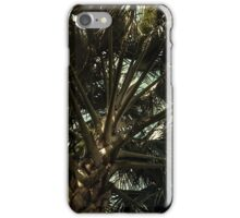 Winter in Negril III iPhone Case/Skin