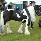 The Gypsy Horse by elsiebarge