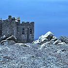 Carn Brea Castle by Steve winters Photography