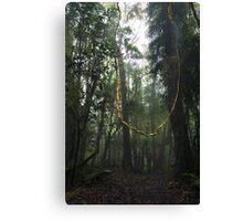 The Fairy Swing Canvas Print