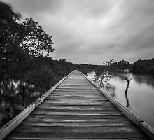 Path to the rain  by Liam Robinson
