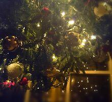 Christmas in the Carolinas III by ambassad