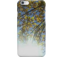 The Brightness of Spring iPhone Case/Skin