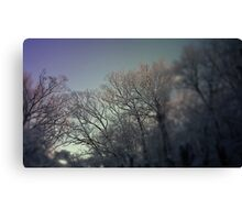 Frozen II Canvas Print