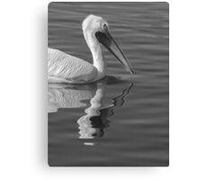 Pelican Reflection Canvas Print