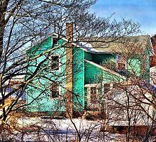 The Green Farmhouse by vigor