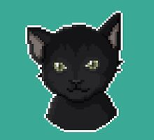 Pixel Cat by maicakes