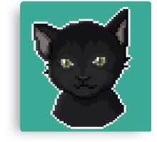 Pixel Cat Canvas Print
