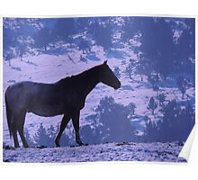 Horse and Blue Delft Poster