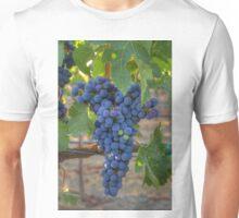 Cabernet Sauvignon Unisex T-Shirt