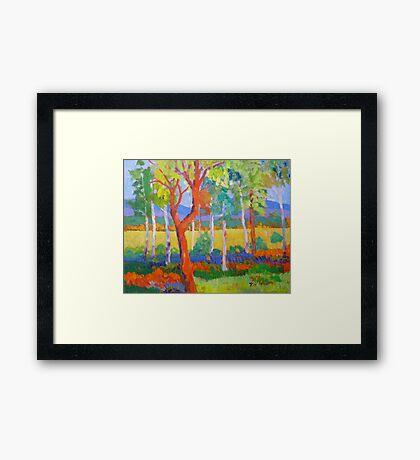 Wilma's Place ; Utopia, Brooweena Qld . Framed Print