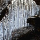 Glistening Curtain of Icicles  by Mark Van Scyoc