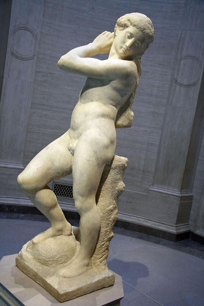 Michelangelo's David-Apollo -- 1 by Cora Wandel