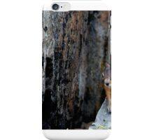 hammy iPhone Case/Skin