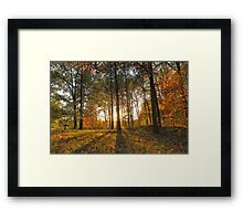 Michigan Fall Sunset Framed Print