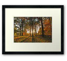 Michigan Fall Sunset Framed Print