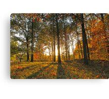 Michigan Fall Sunset Canvas Print